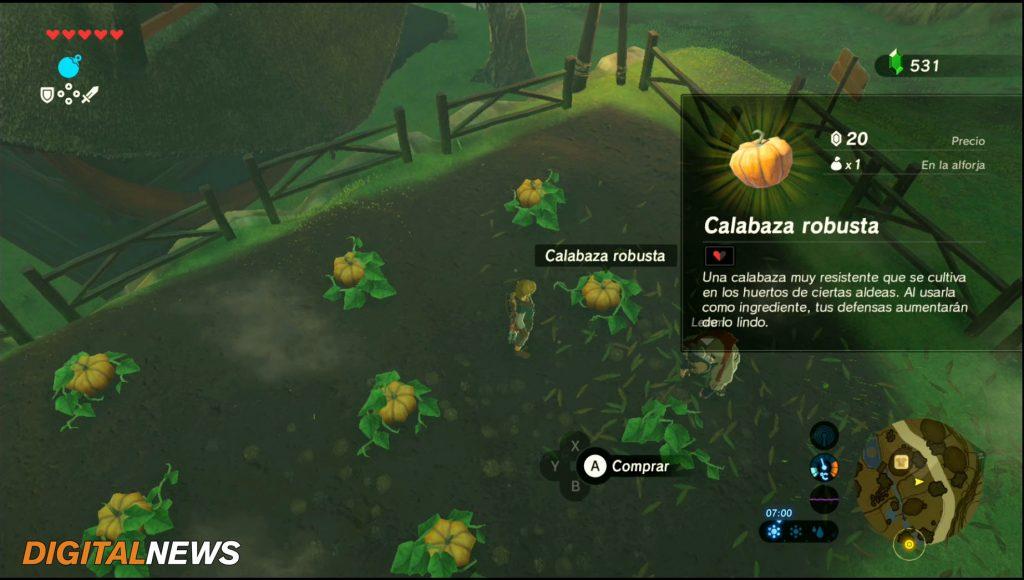Calabaza robusta Kakariko