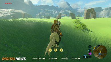 Domar caballos